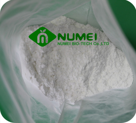 Testosterone Propionate (TP) Powder
