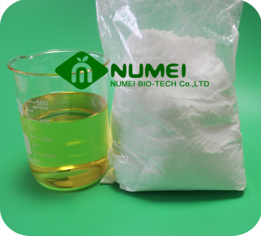 Testosterone Base (TB) Powder
