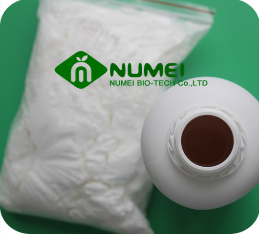 17-Methyltestosterone Powder